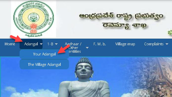 check-adangal-information Meebhoomi AP Land Records: Search ROR 1B Check Online | AP Village Map